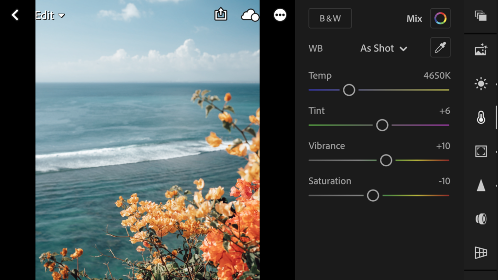 Lightroom mobile presets key adjustments