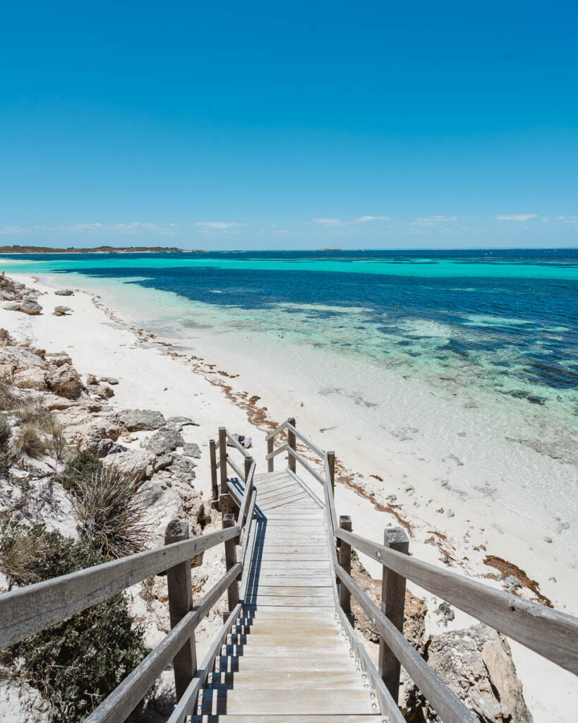 Perth to Esperance road trip itinerary - Rottnest Island
